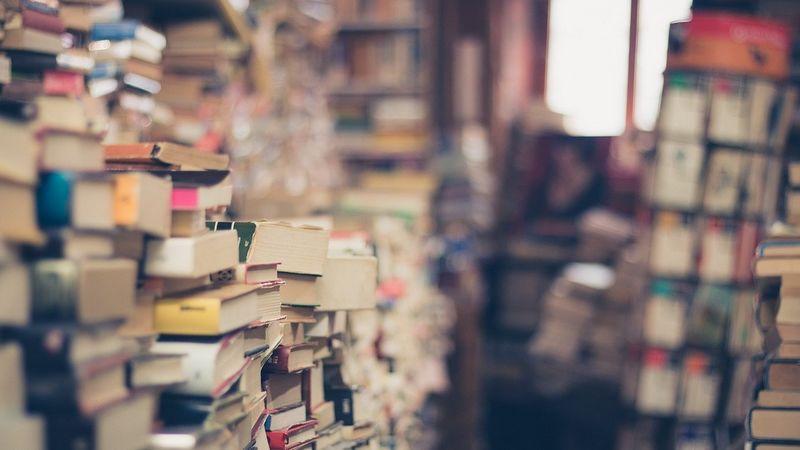 plan de negocio librería